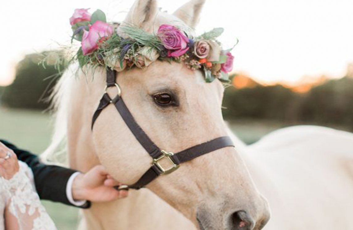 E.L.Equine wedding favors